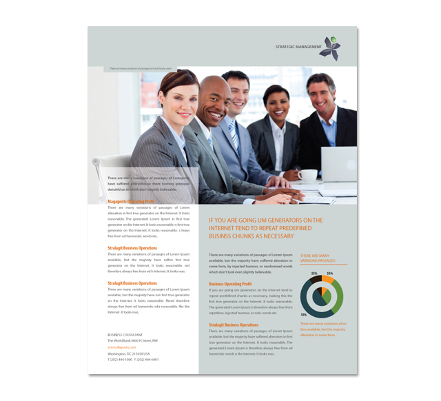 Strategic Management Flyer Template