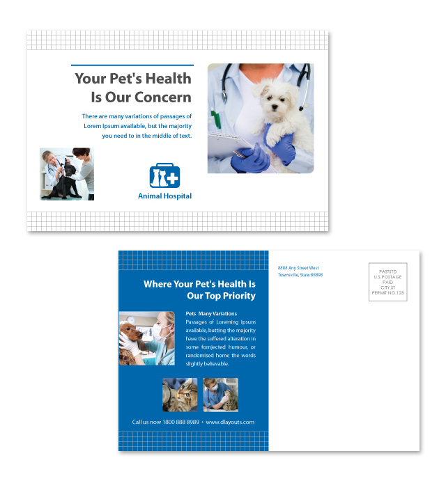 Veterinarians Postcard Template